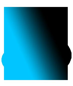 گاز co2